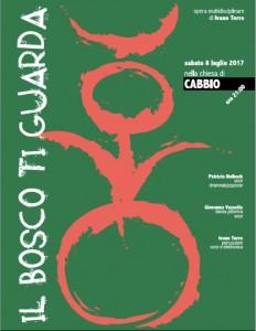 Concerto Ivano Torre - Piaceretica
