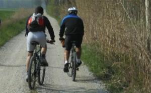 Piaceretica bici